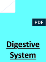 Digestive-System-PPT.ppt
