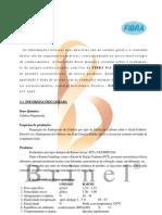 Manual Beneficiamento de Raiom Brinel