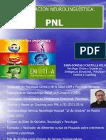 PNL AEH FINAL