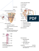 RENAL-FUNCTION-reviewer