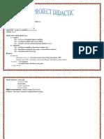 0_proiect.cls5.recapit.docx