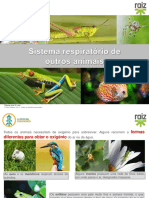 re82138_cv6_sistema_respiratorio_animais
