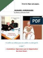 CHRONIQUES JURIDIQUES - Copy.pdf