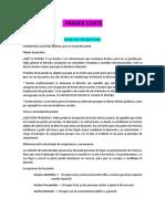 APUNTES PROBATORIO COMPLETOS.docx
