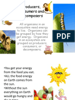 1.-Producers-Consumers-and-Decomposers-powerpoint.pptx