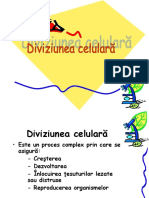 diviziunea (1).ppt