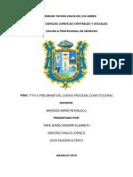 procesal onstitucional TRABAJO HECHO.docx