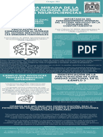 Una mirada de la Psicología desde las neurociencias Infographics (2)