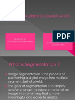 0010013 GOVIND REGION ORIENTED SEGMENTATION PPT