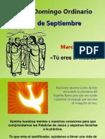 XXIV Domingo Ordinario, Mc. 8, 27-35