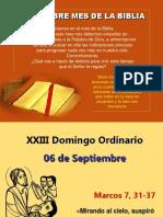XXIII Domingo Ordinario, Mc. 7, 31-37