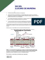 Microbiología aclaraciones