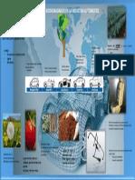 infografia materiales biodegradables