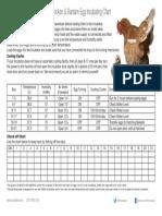 Chicken Hatching Guide