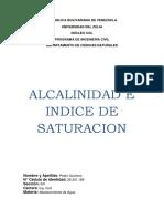 Alcalinidad e Indice de Saturacion LAB.docx