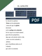 EL AJOLOTE.docx