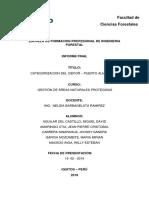 INFORME FINAL-CATEGORIZACION.docx