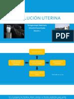 Involución Utérina.pptx