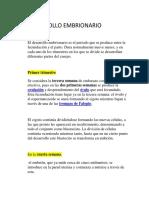 DESARROLLO EMBRINARIO.docx