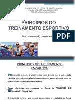 4- Princípios do treinamento esportivo.ppt