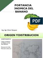 IMPORTANCIA ECONÓMICA DEL BANANO