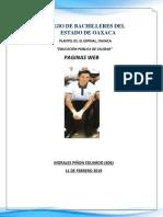 CARACTERISTICAS WEB Y FORMATOS.docx