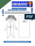 Sistema-Digestivo-para-niños-de-4-años.doc