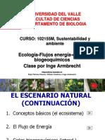 2.Inge-Armbrecht-Flujo energia-ciclos biogeoq