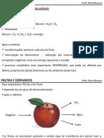 Frutas e Derivados. Profa. Flávia Meneses