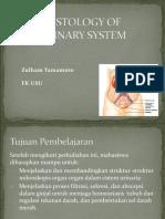 H 4.2 Histology urinary system.pptx