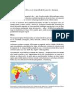 Importancia de Asia y África en el desarrollo de las especies Humanas.docx