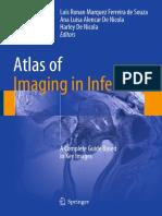 de Souza - Atlas of Imaging in Infertility - A Complete Guide Based in Key Images.pdf