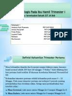 trimester1.pptx