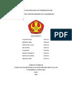 MAKALAH ANTIBIOTIK AMINOGLIKOSIDA DAN MAKROLIDA.docx