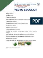 INFORME DE PROYECTO ESCOLAR ACT