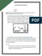 NEUMATICOS INFLUENCIA.docx
