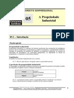 EMP 05 - A Propriedade Industrial.pdf