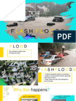 flashflood geo FINAL.pptx