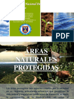 Universidad Nacional De Piura-Sullana.pptx