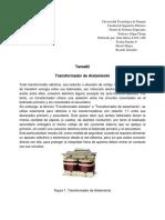 Tarea2-Transformadoresdeaislamiento