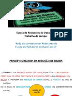 ESCOLA DE REDUTORES DE DANOS apresentação da proposta