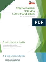 Ciclo+Vital.pptx