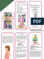 plan de carla precalmapsiaysinodealarma.docx