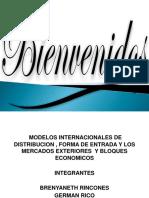 MODELOS INTERNACIONALES DE DISTRIBUCION -VIANNA REDONDO.pptx