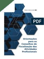 Orientação para os Conselhos de Fiscalização das Atividades Profissionais (19)