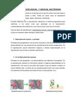 microbiologia.docx