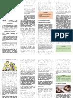 FOLLETO INTRODUCCION GENERAL A LA FILOSOFIA 2020