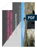 PNIE en la cotidianeidad. clase Mg Omar Chogriz 2019(1).pdf