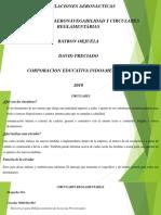 Regulaciones Aeronauticas.pptx
