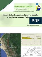 GORE-Cajamarca-Mesa-Temática-Forestal-SEPIA